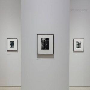diane arbus: in the beginning @Hayward Gallery, London  - GalleriesNow.net
