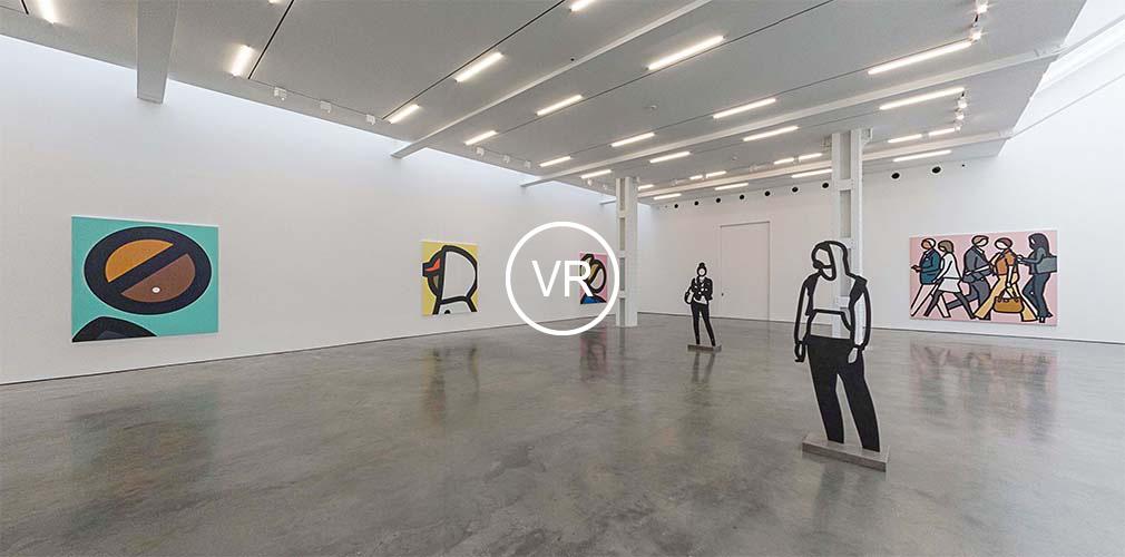 immersive VR views