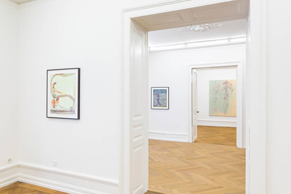 Mai 36 Galerie Flavio Garciandia 2019 4