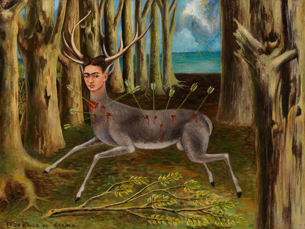 Surrealism in Mexico Di Donna