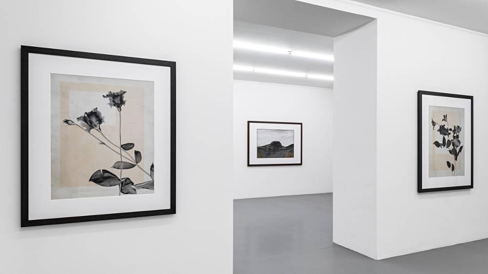 Mai 36 Galerie Thomas Ruff 2019 1