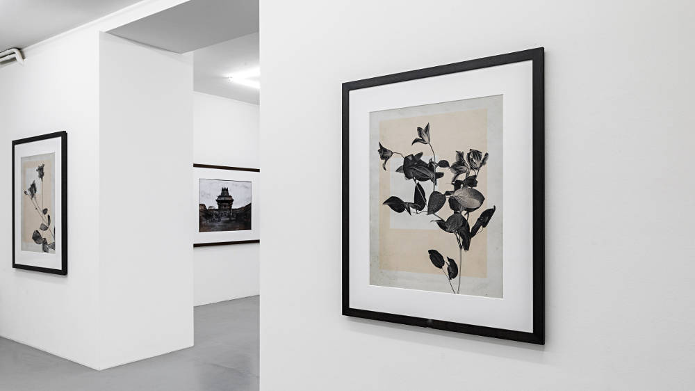Mai 36 Galerie Thomas Ruff 2019 5