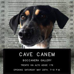 Cave Canem @Boccanera, Trento  - GalleriesNow.net