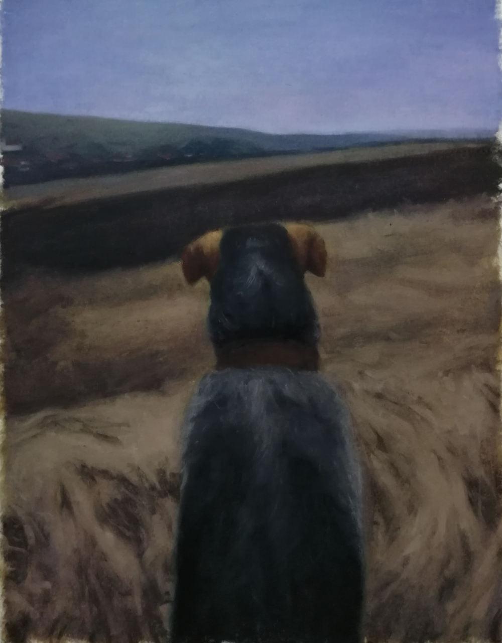 Cristian Avram, The thinking dog, 2019. Oil on canvas 69x90cm
