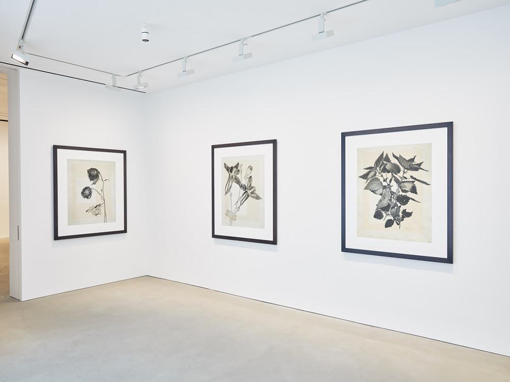 David Zwirner Hong Kong Thomas Ruff 3