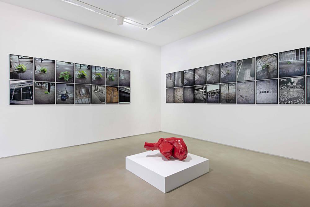 Galerie Chantal Crousel Jean-Luc Moulene 2019 2