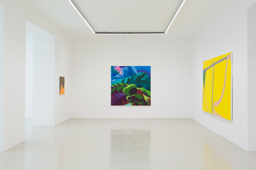 Galerie Lisa Kandlhofer The Picture is a Forest 3
