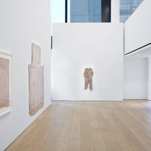 Heidi Bucher: The Site of Memory @Lehmann Maupin W 24 St, New York  - GalleriesNow.net