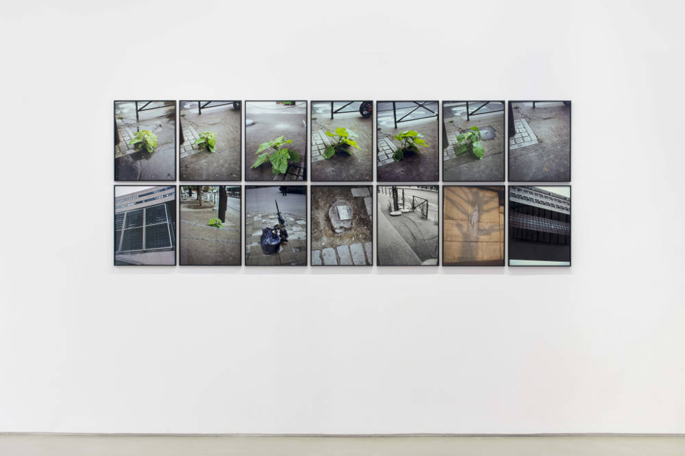 Jean-Luc Moulène, La Vigie (extrait 9) - Paris 2004-2011, 2012. 14 photographs (13 cibachromes and 1 baryte mounted on aluminum) 107 x 295.5 cm 42 1/8 x 116 3/8 inches each. Edition of 3 + 2 AP. Courtesy the artist and Galerie Chantal Crousel, Paris. Photo : Martin Argyroglo © Jean-Luc Moulène / ADAGP, Paris (2019)