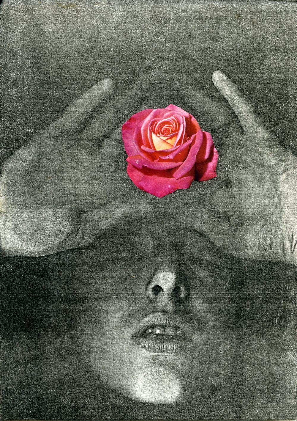 Penny SLINGER, La Vie en Rose, 1976. Xerox self body print with collage 29.8 x 21 cm. Copyright the Artist; Courtesy Richard Saltoun Gallery