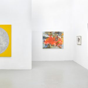 Rebecca Allan and Dean Fleming: Landscape Medicine @David Richard Gallery, New York  - GalleriesNow.net