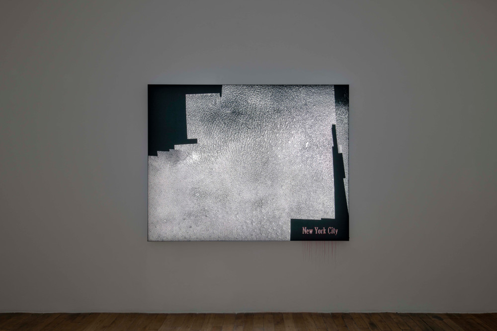 Galerie Chantal Crousel Seth Price 5