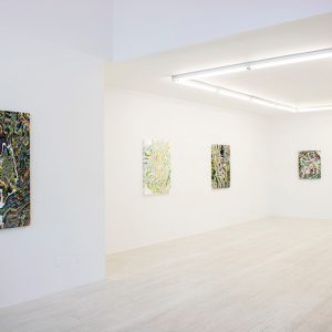 Glen Baldridge: No Way @Halsey McKay Gallery, New York  - GalleriesNow.net