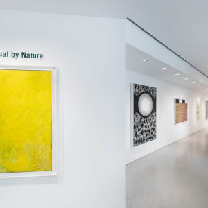 Spiritual by Nature @Michael Rosenfeld Gallery, New York  - GalleriesNow.net