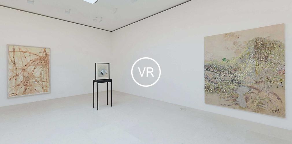 new VR views