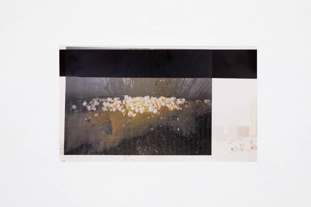 Hannah Buonaguro, Still from video of egg performance after finding 3 dozen eggs on the street, 2019. Inkjet print of digital video still 21 x 36 cm (8.27 x 14.17 inches) Courtesy of the artist & VNH Gallery. Photo: Johanna Benaïnous