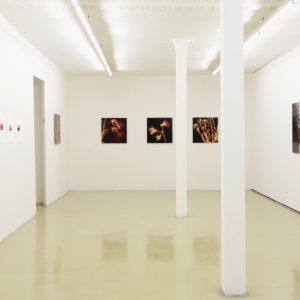 Angelika Krinzinger: Im Detail @Krinzinger Projekte, Vienna  - GalleriesNow.net