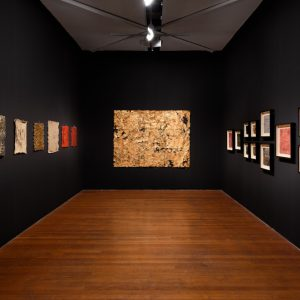 Kirtika Kain: Corpus @Roslyn Oxley9 Gallery, Sydney  - GalleriesNow.net