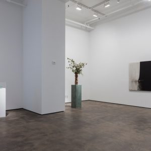 Abstract by Nature @Sean Kelly Gallery, New York  - GalleriesNow.net