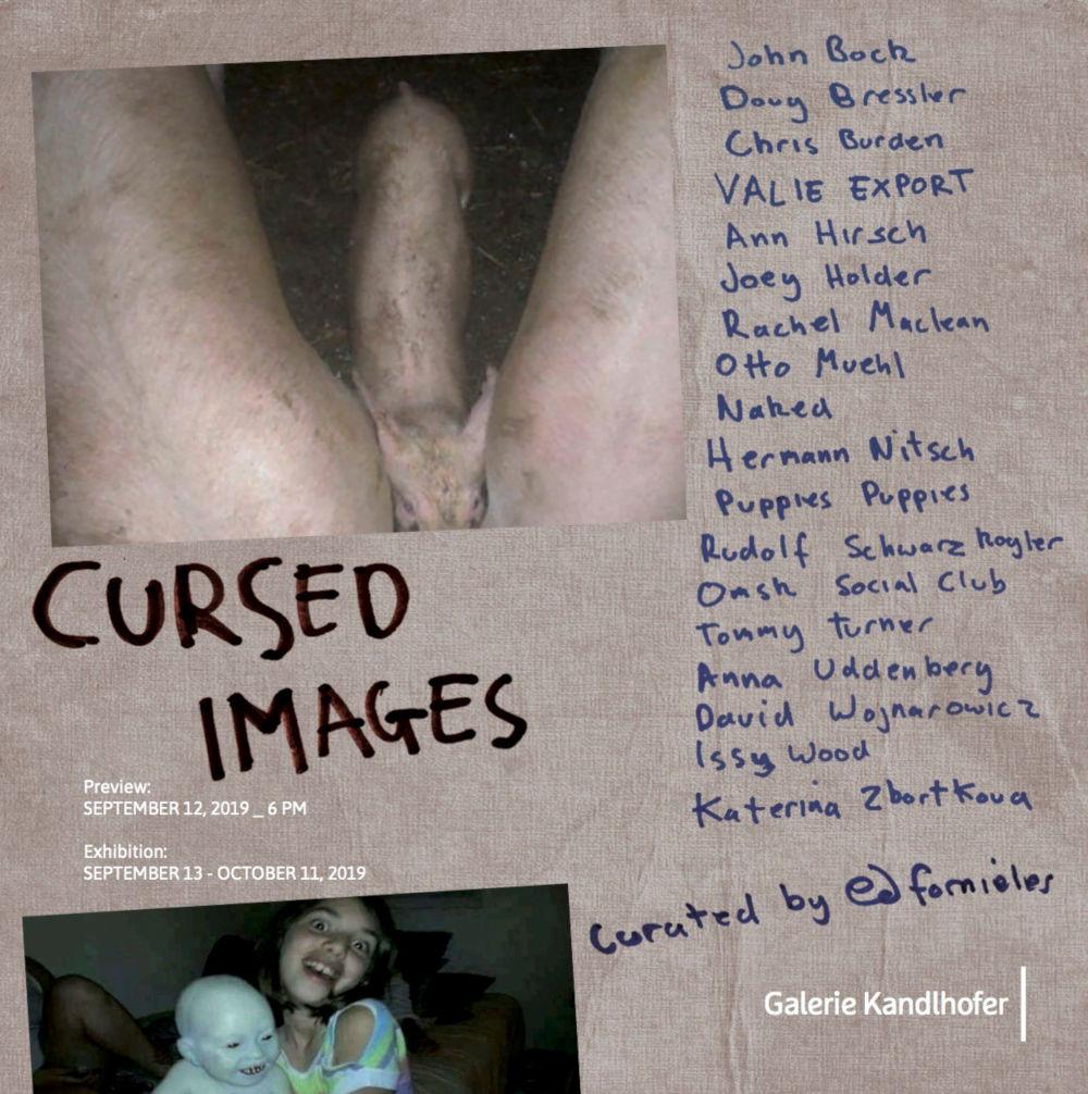 Cursed Images Kandlhofer