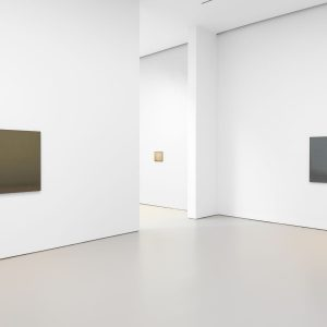 Lucas Arruda: Deserto-Modelo @David Zwirner 19th St, New York  - GalleriesNow.net
