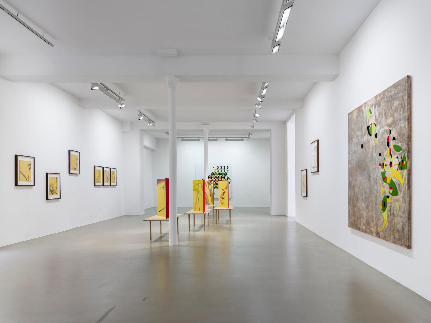 Galerie Chantal Crousel Gabriel Orozco 1