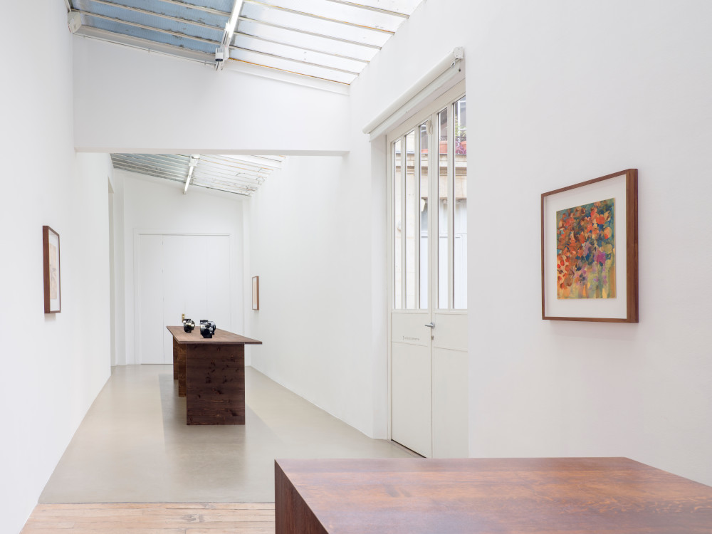 Galerie Chantal Crousel Gabriel Orozco 6