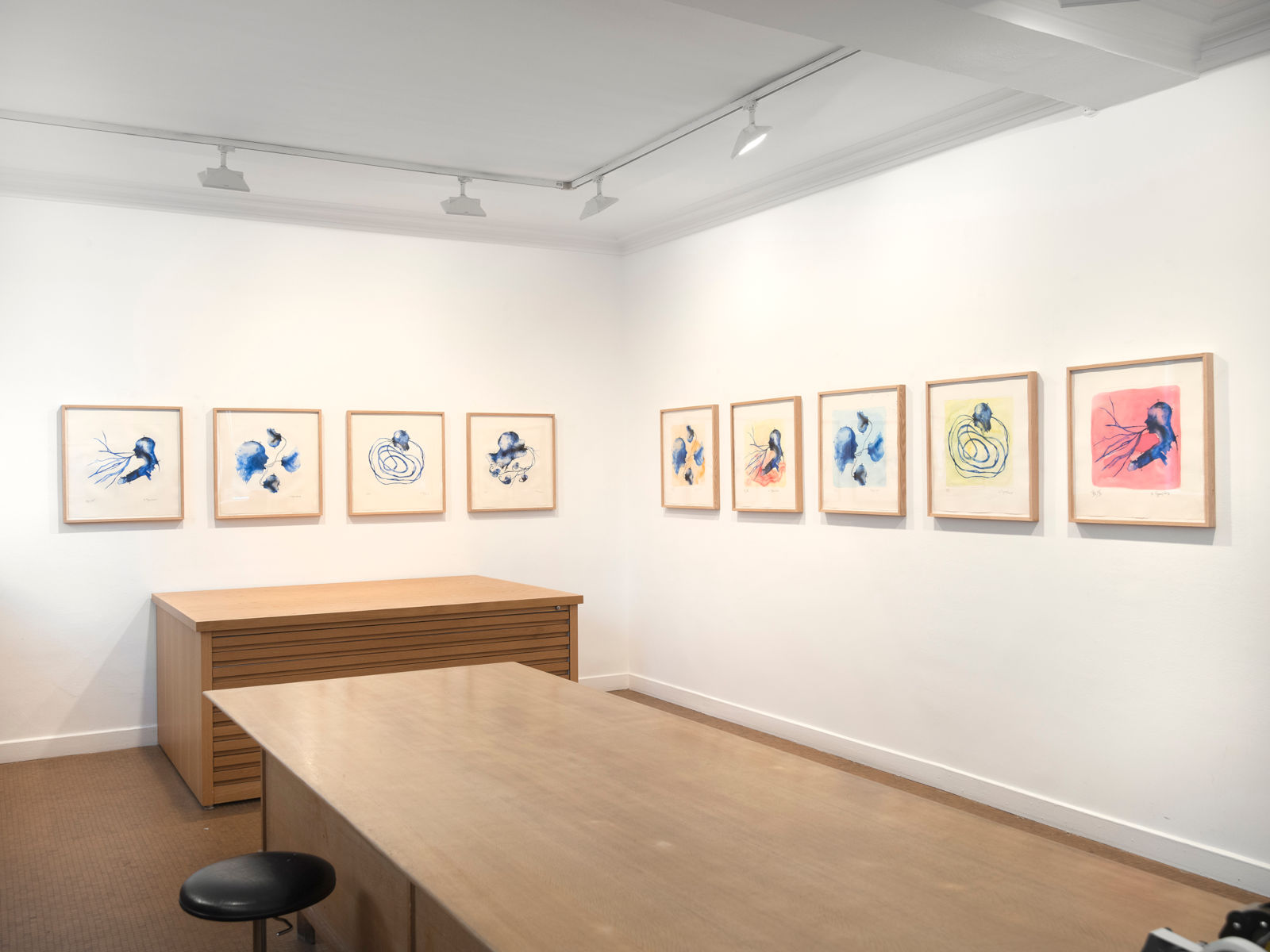 Galerie Lelong Barthelemy Toguo 1