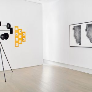 Boedi Widjaja: Declaration of @Helwaser Gallery, New York  - GalleriesNow.net
