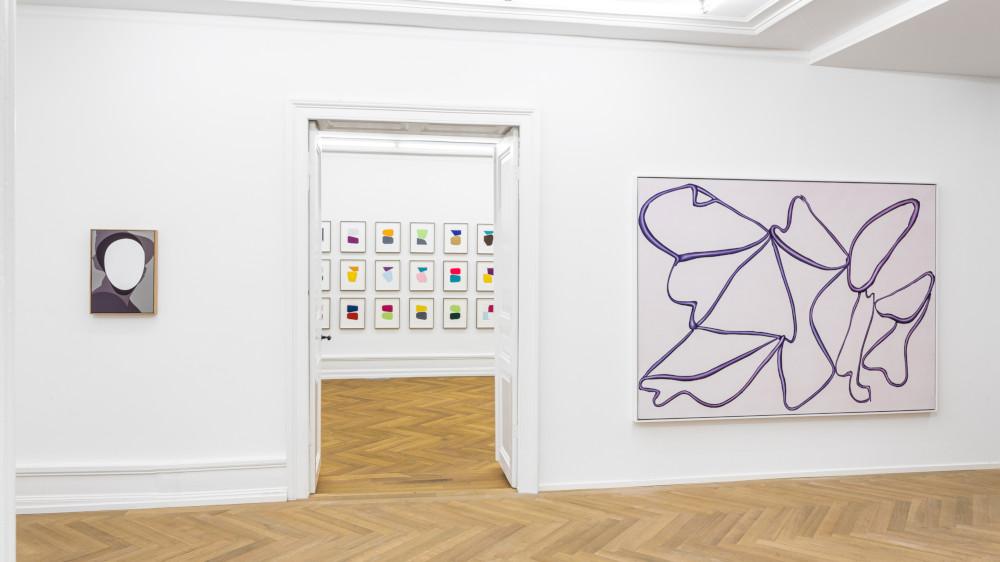 Mai 36 Galerie Albrecht Schnider 6