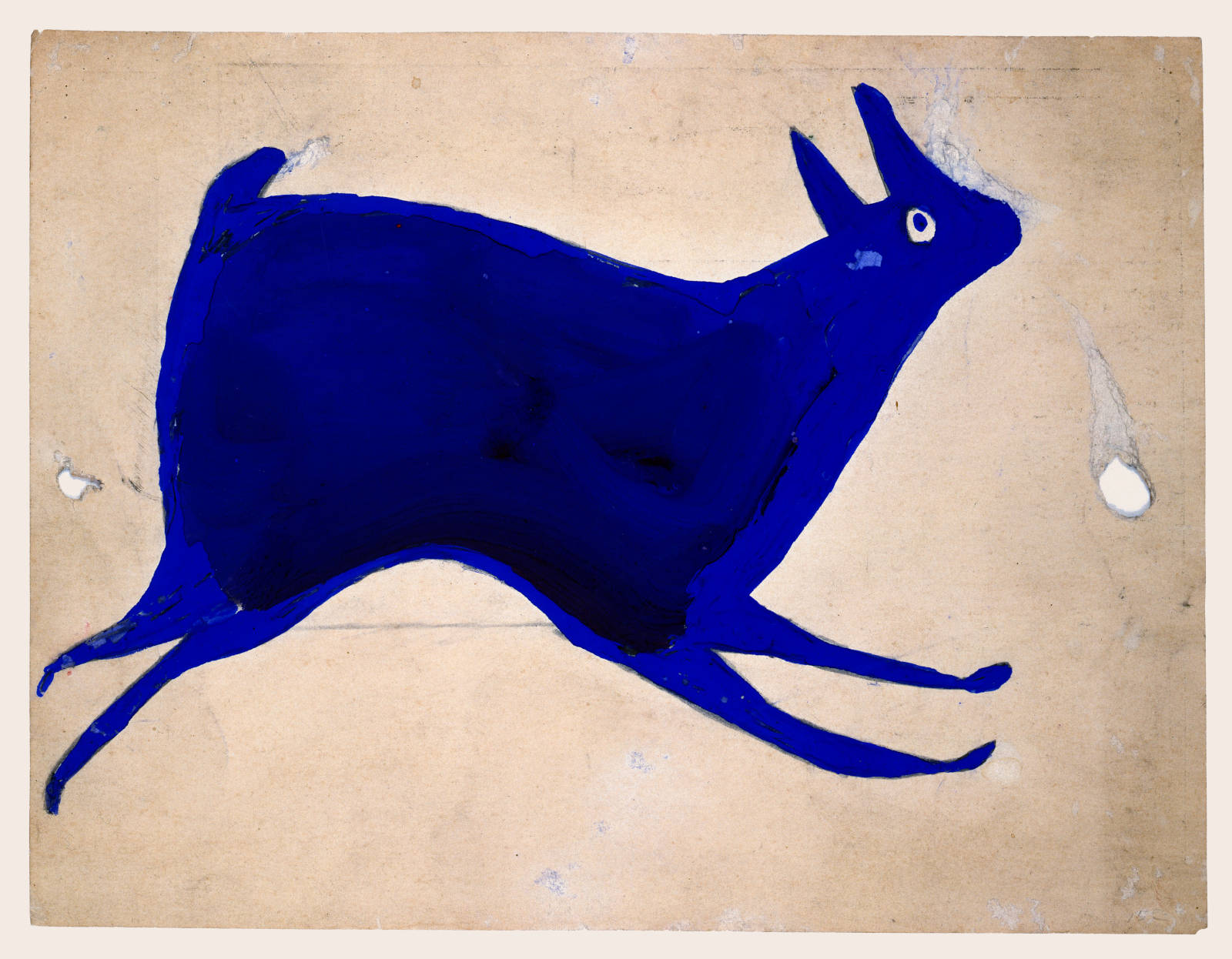 Blue Rabbit Running