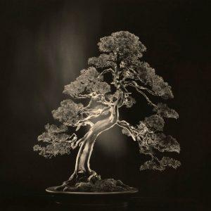 Yamamoto Masao: Itteki @Yancey Richardson Gallery, New York  - GalleriesNow.net