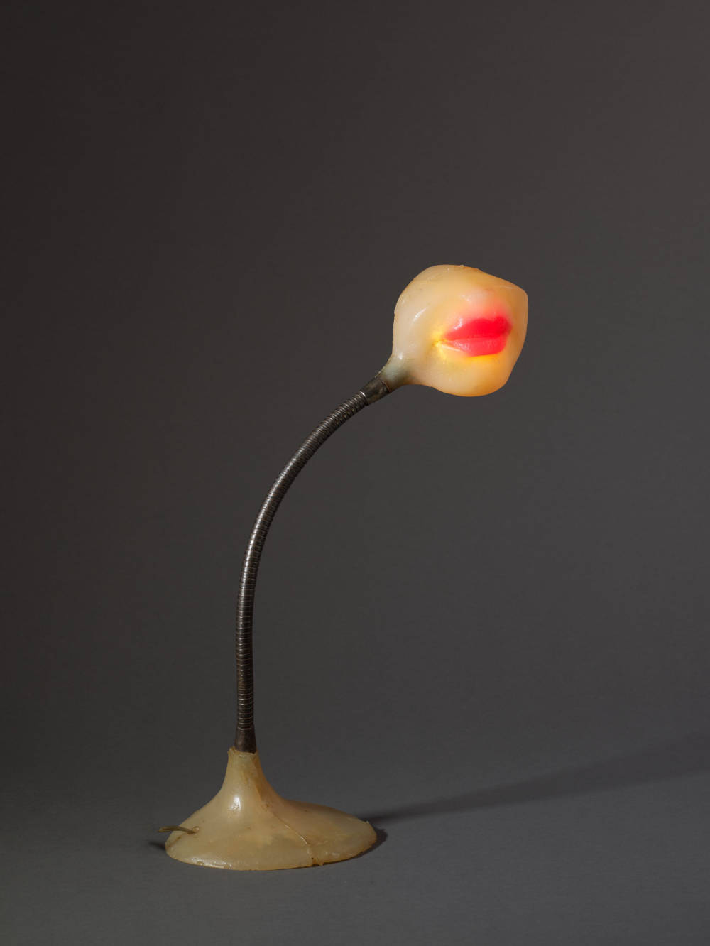Lampe-bouche (Illuminated Lips)