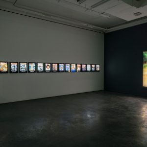 Alfredo Jaar: 25 Years Later @Goodman Gallery, London  - GalleriesNow.net