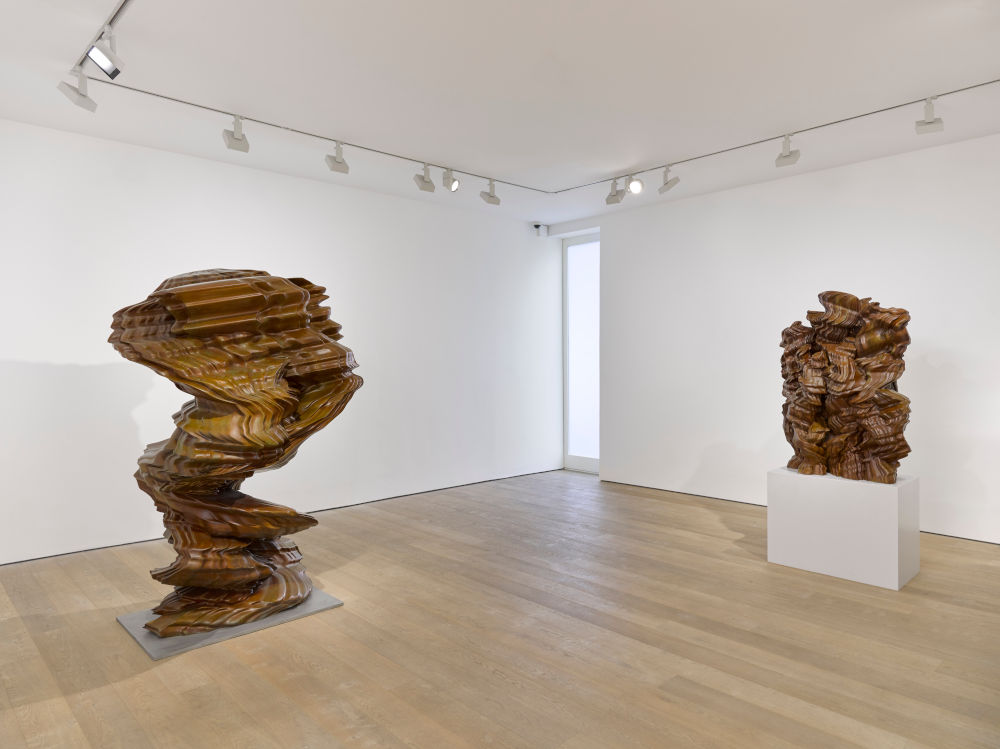 Lisson Gallery Tony Cragg 3