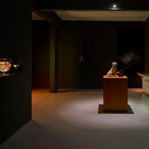 Ajay Kurian: Possessions @Sies + Höke, Düsseldorf  - GalleriesNow.net