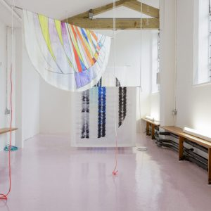 Invites: Fay Zmija Nicolson @Zabludowicz Collection, London  - GalleriesNow.net