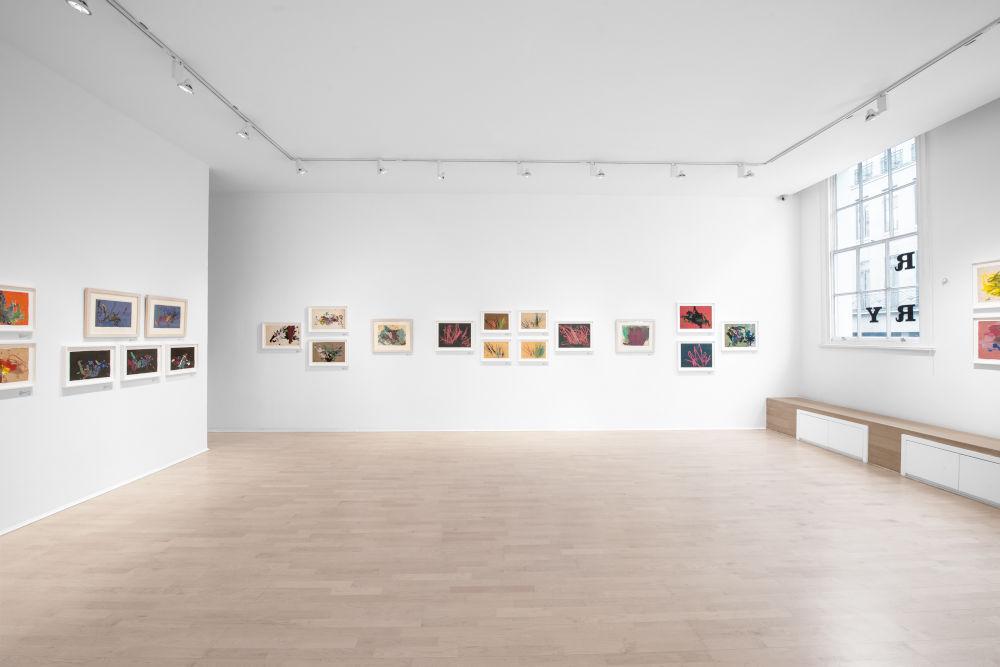 The Mayor Gallery Congo 6