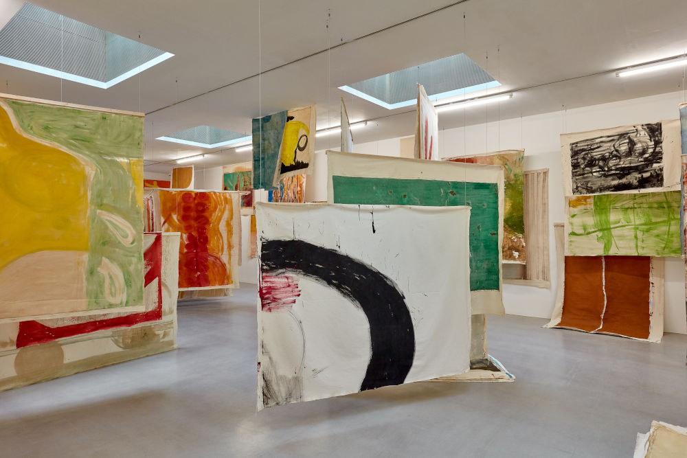 Camden Arts Centre Vivian Suter 4