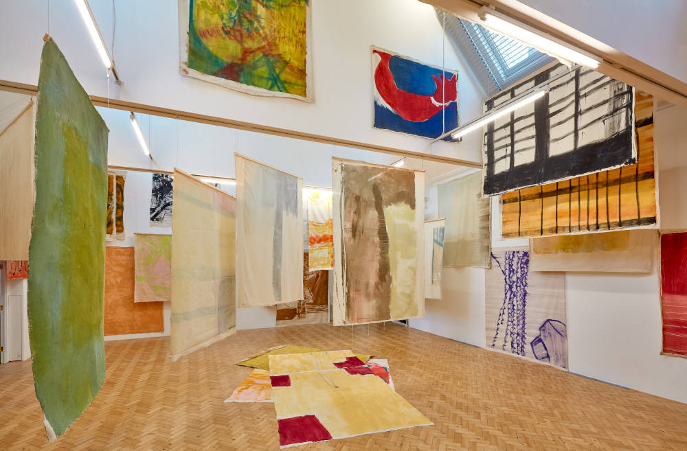 Camden Arts Centre Vivian Suter 6