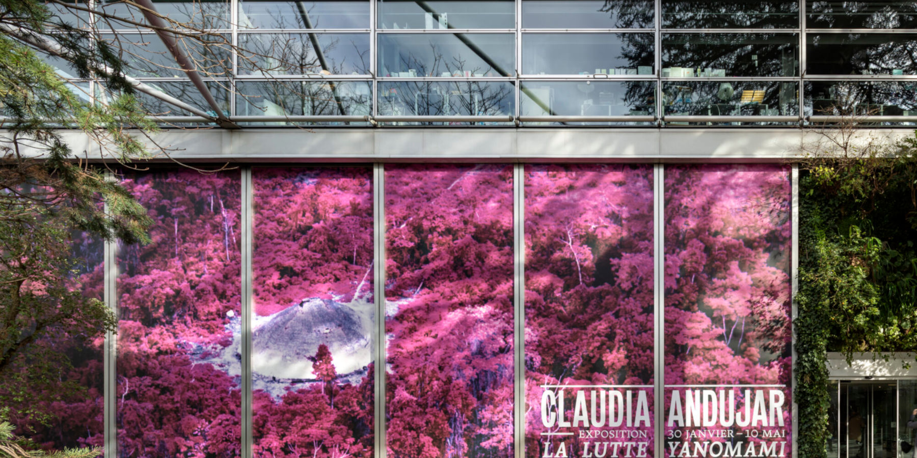 Fondation Cartier Claudia Andujar 1