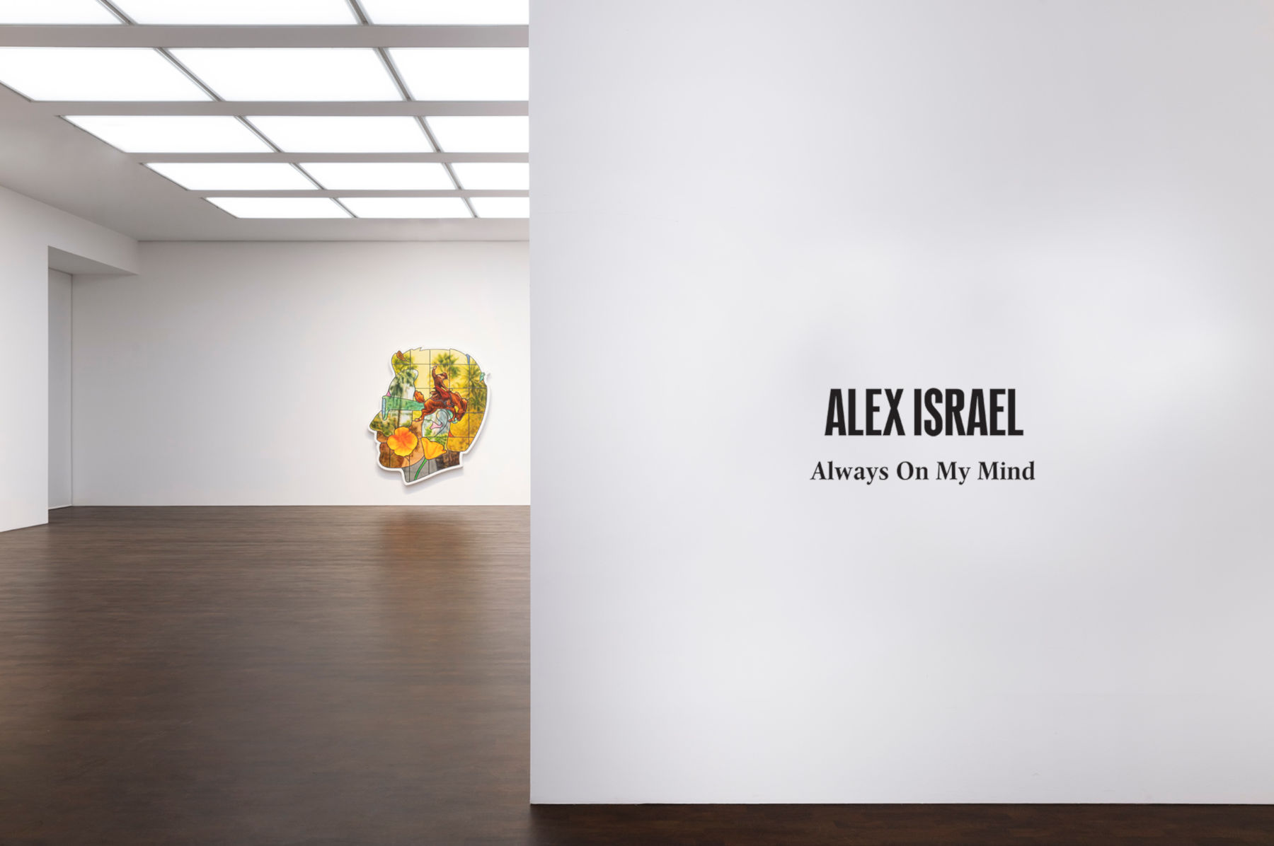Gagosian Grosvenor Hill Alex Israel 1