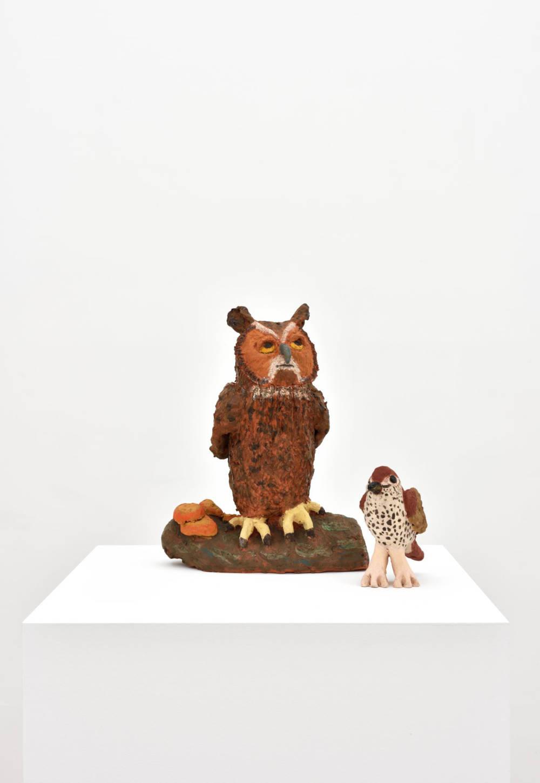 Owl and Thrush
