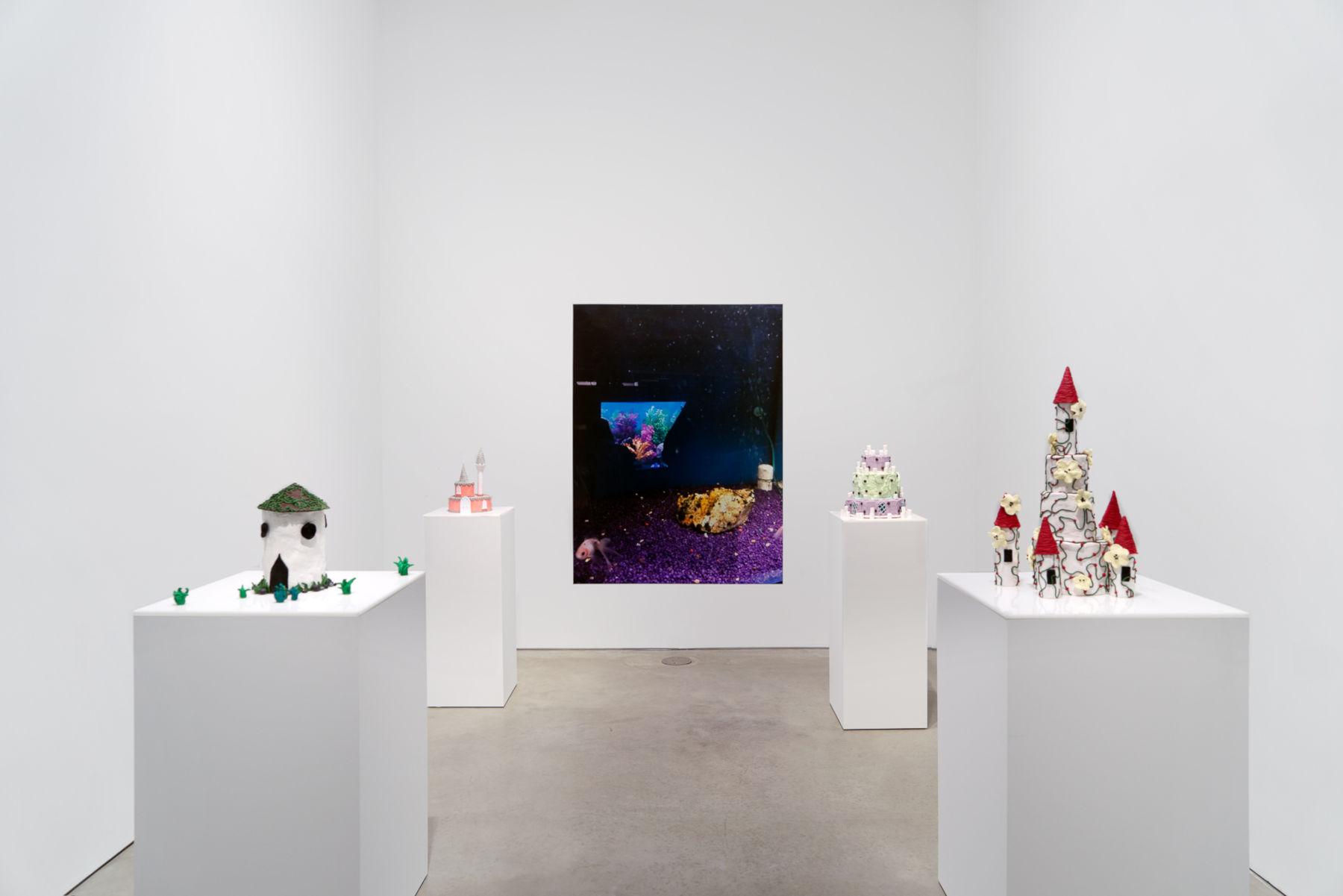 303 Gallery Gina Fischli 1