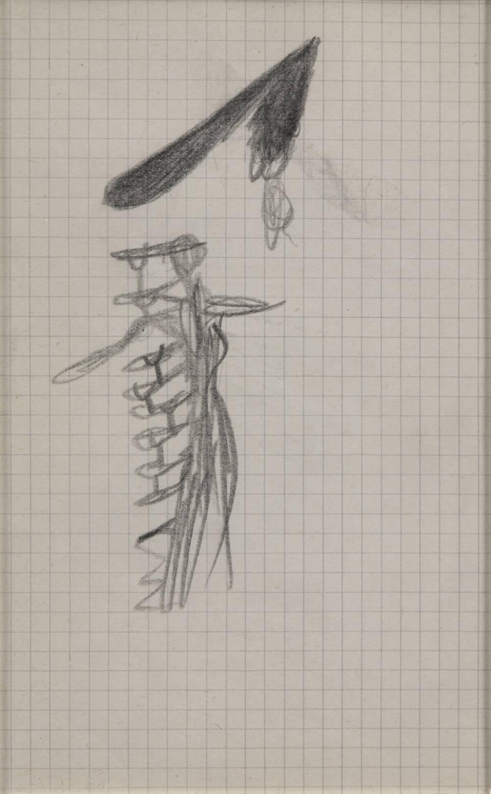 Excroissances dorsales avec béquilles