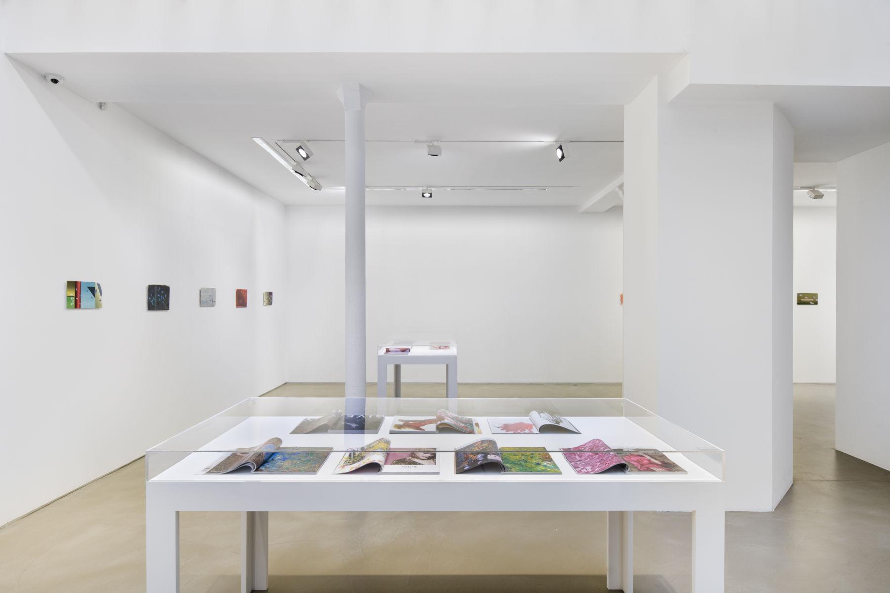 Galerie Chantal Crousel Clement Rodzielski 1