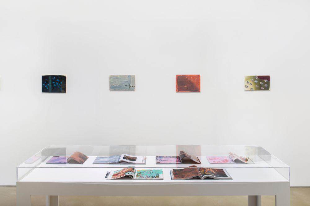 Galerie Chantal Crousel Clement Rodzielski 3
