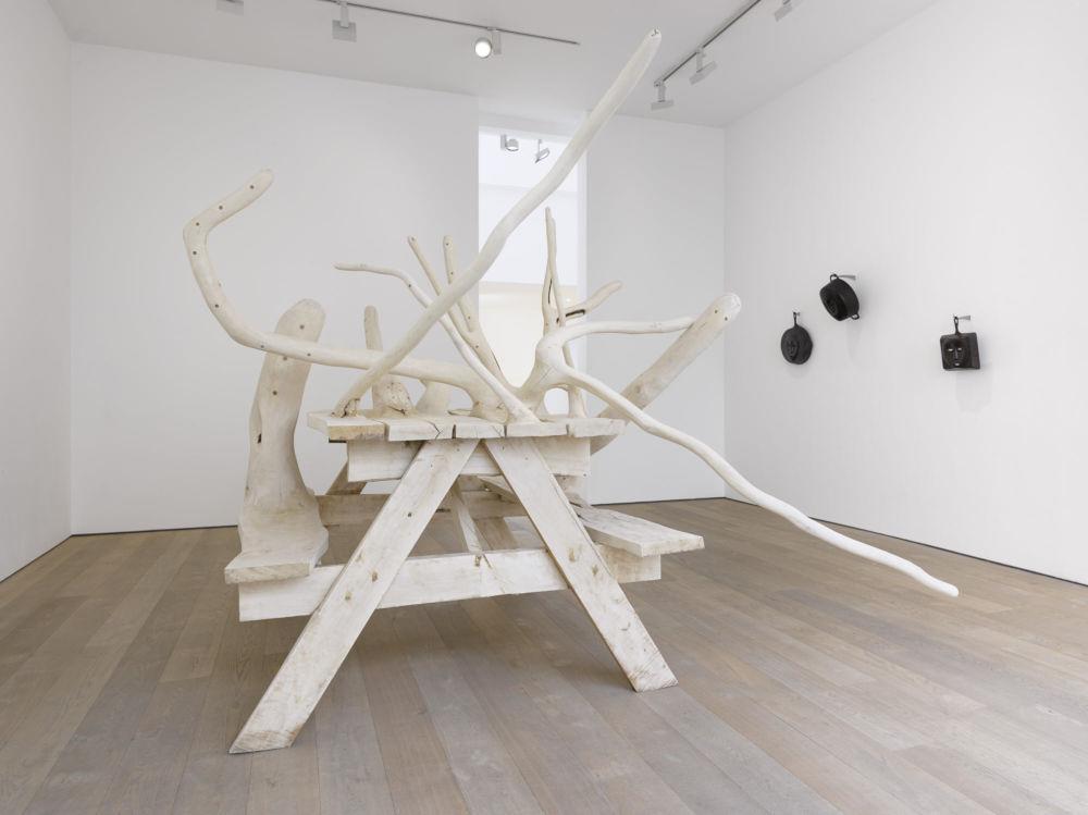 Lisson Gallery London Hugh Hayden 3