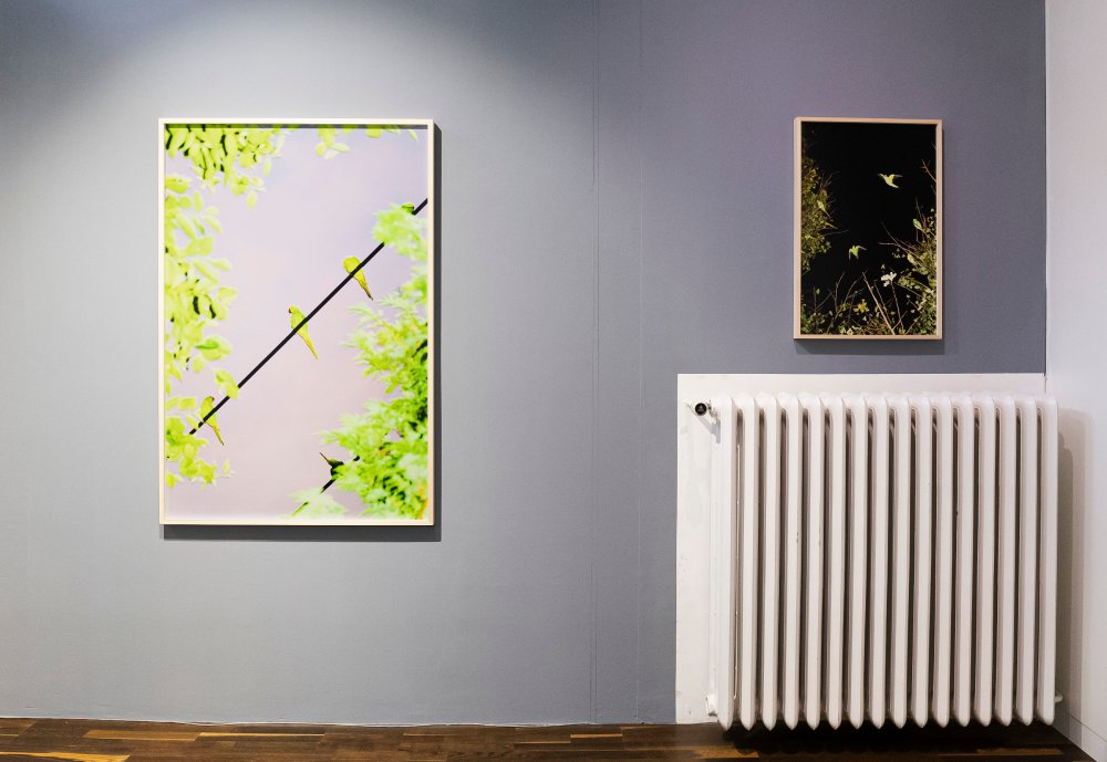 Christophe Guye Galerie Yoshinori Mizutani 2