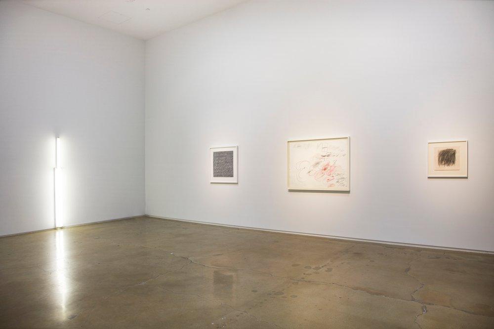 Kohn Gallery Jellyfish 7